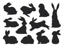 Bunny Pet Silhouette In Differ...
