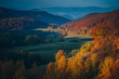 Amazing dawn autumn scenery with colorful trees on meadow, fog above valley