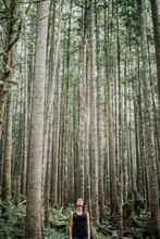 A Female Hiker Looks Up At The Trees In A Forest In Washington