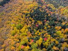 Dramatic Fall Foliage Seen Fro...