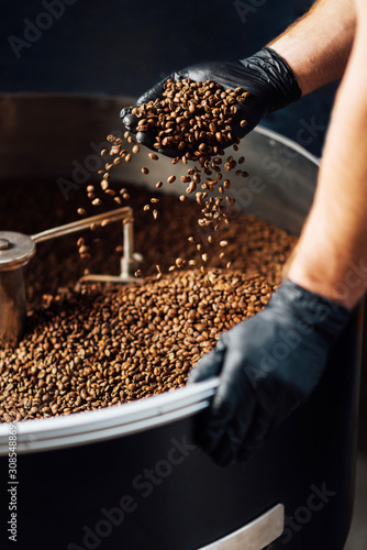 Fototapeta worker took Freshly roasted coffee to check the quality of mixer drum for cooling obraz