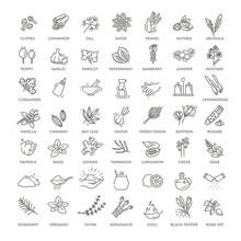 Condiment Icons Set. Outline S...