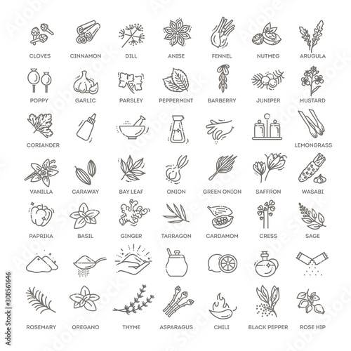 Condiment icons set. Outline set of condiment vector icons