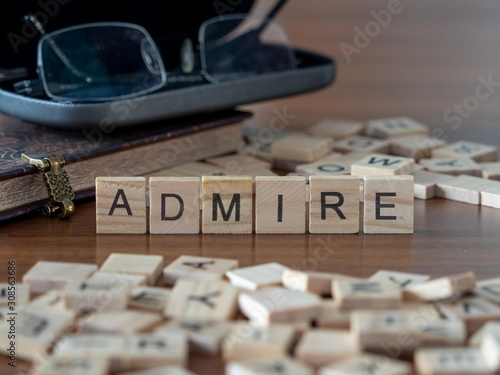 admire the word or concept represented by wooden letter tiles Canvas Print