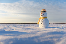Funny Snowman In Stylish Hat A...