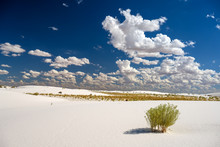 Tranquil Image Of White Sand D...