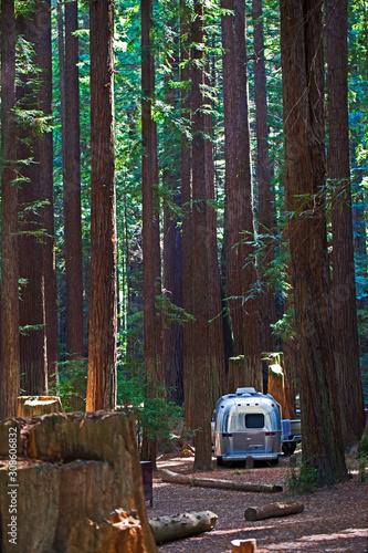 Photo Camping im Wald