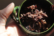 Chapulines, Traditional Food From Oaxaca Mexico. Insects