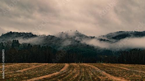 Foggy sunrise in Appalachia Canvas Print