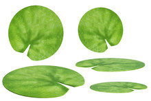 Set Of Lily Pads Isolated On White, 3d Render.