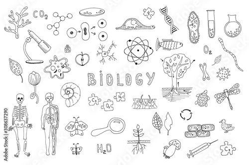 Tableau sur Toile Set of objects, symbols biology lesson