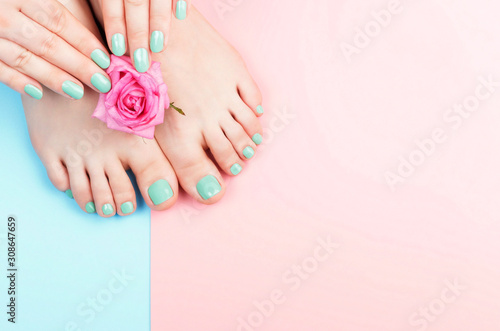 Female hands, legs with manicure and pedicure with flower on a pink, blue background, top view