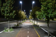 Night Bicycle Path Illuminated...