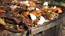 Home Compost Bin. Heap Of Wet ...