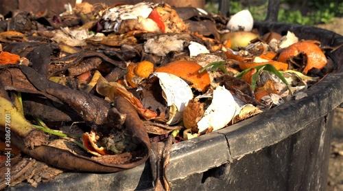 Fényképezés Home compost bin