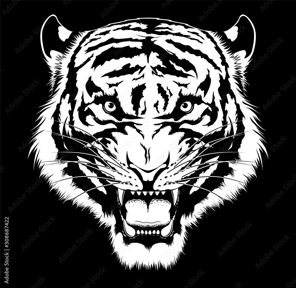 Fototapeta Black and white roaring tiger head