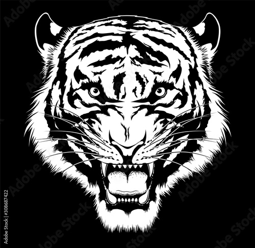 Black and white roaring tiger head Fotomurales