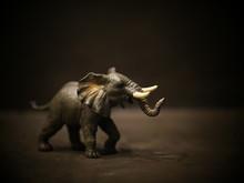 Isolated Elephant Toy On Stone...