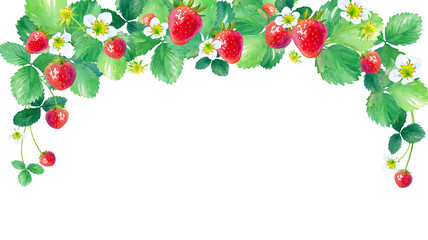 Fototapeta Do kuchni イチゴのアーチ型フレーム、水彩イラスト