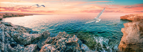 Lagoon with blue water and seagull in foreground Poster Mural XXL