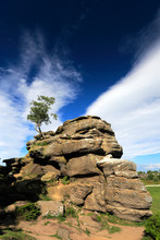 The Gritstone Rock Formations At Brimham Rocks, Nidderdale, North Yorkshire, England, UK