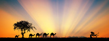 Silhouette Of Camel Caravan Going Through On The Lake. Vector Illustration For Islamic Background, Poster, Calendar, Banners, Postcards, Website.