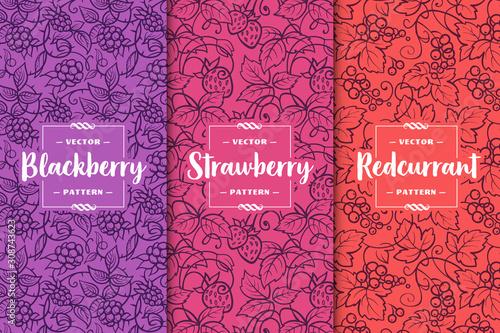 Set of three berries patterns Canvas Print
