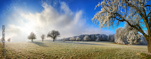 Photo Magical winter panoramic landscape