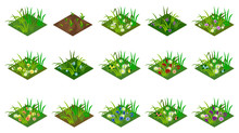 Isometric Grass And Flowers Se...