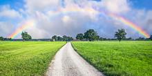 Panorama Of Country Road Leadi...