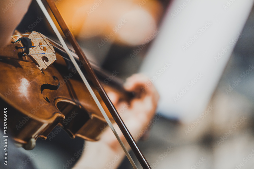 Fototapeta Side views of classical instruments - violin, double basses, cellos, closeup of hands