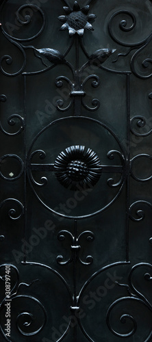 Fotomural  stylish forged door elements close-up