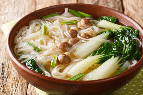 obraz dibond Chinese noodle soup with mushrooms, onions and bok choy closeup in a bowl on the table. horizontal