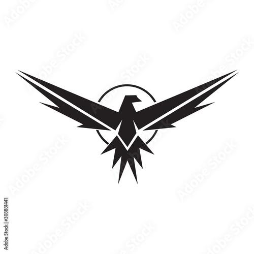 Photo Eagle logo circle design vector