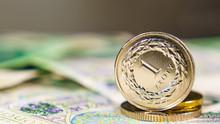 Close Up Polish Zloty Banknote...