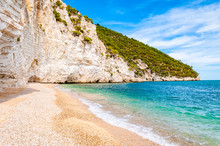 Beautiful Pebble Beach Surrounded By High Massive White Limestone Rocky Cliffs Eroded By Adriatic Sea Waves And Wind. Green Aleppo Pines Growing On The Rocks. Emerald Water Washing The Coastline