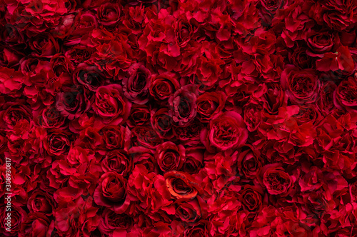 Photo  Beautiful background with red roses
