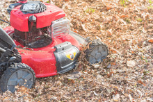 Working Lawn Mower Mulching Autumn Leaves For Lawn Care In Texas, USA