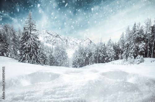 Fotomural Winter background of free space and sunny december day