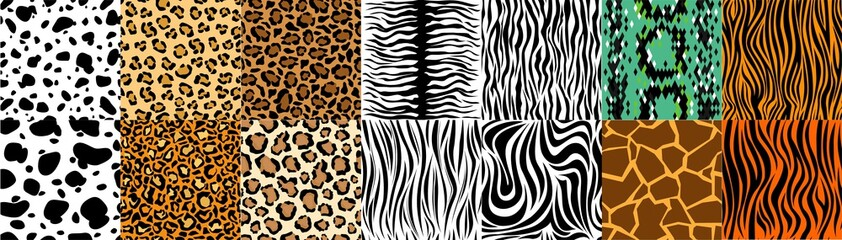 FototapetaCollection of natural seamless patterns with coat, skin of fur textures of wild exotic animals - zebra, snake, tiger, leopard, giraffe. Flat vector illustration for wrapping paper, textile print.