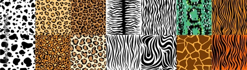 Collection of natural seamless patterns with coat, skin of fur textures of wild exotic animals - zebra, snake, tiger, leopard, giraffe Tableau sur Toile