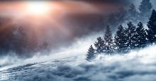 Dark Winter Forest Background At Night. Snow, Fog, Moonlight. Dark Neon Night Background In The Forest With Moonlight. Neon Figure In The Center. Night View, Magic.