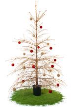 Dried Christmas Tree With Ball...