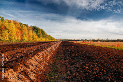 Pile of ground peat at an excavation side in a peat bog in Northwestern Germany Canvas Print