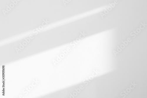 Obraz Organic drop diagonal shadow on a white wall. Overlay effect for photo, mock-ups, posters, stationary, wall art, design presentation - fototapety do salonu