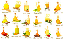 Set Of Isolated Nut Oil Bottles, Organic Drink