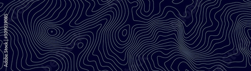 Fototapeta Topographic map lines background. Abstract vector illustration. obraz