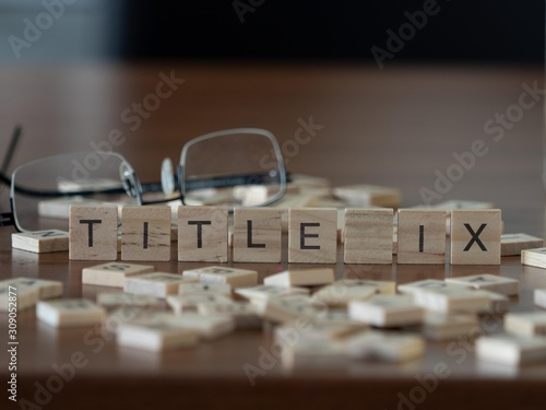 title ix the word or concept represented by wooden letter tiles Canvas Print