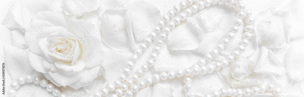 Fototapeta Beautiful white rose and pearl necklace on a background of petals. Ideal for greeting cards for wedding, birthday, Valentine's Day, Mother's Day
