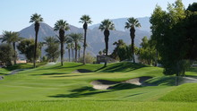View Of Desert Golf Course Wit...